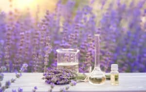 Lavender helps with cravings which will aid in you keeping sobriety.
