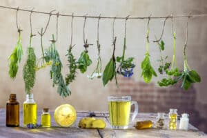 Herbs hung to dry to be ready for preparation.