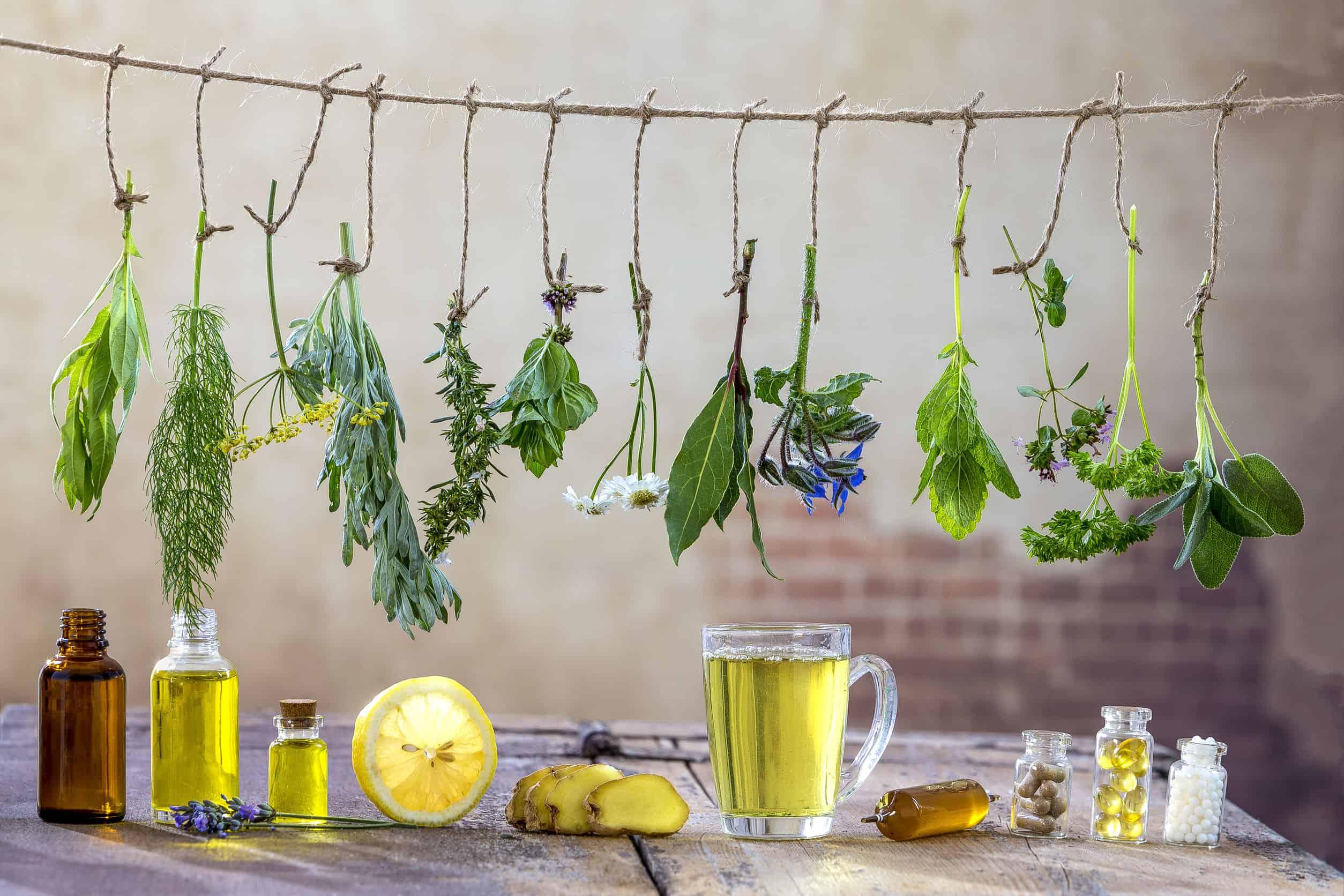 Herbal Preparedness: Hacks to Nurture Your Future Self
