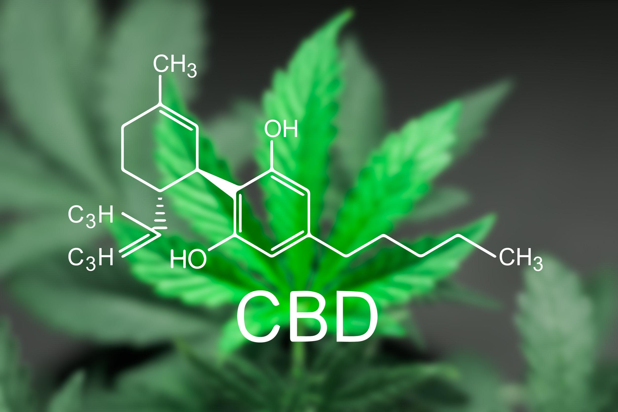 CBD and Beyond: A Cannabis Collaboration of Cannabinoids