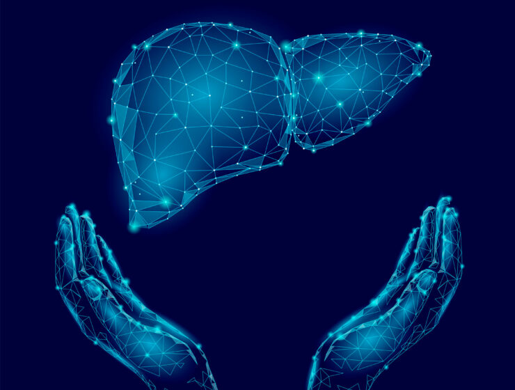 A graphic of a protected liver | The Anti-Cleanse: Liver Protection Plan| The Alchemists Kitchen
