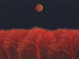 Full_Moon_Over_Red_Trees.JPG