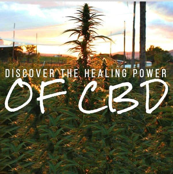 The Healing Power of CBD