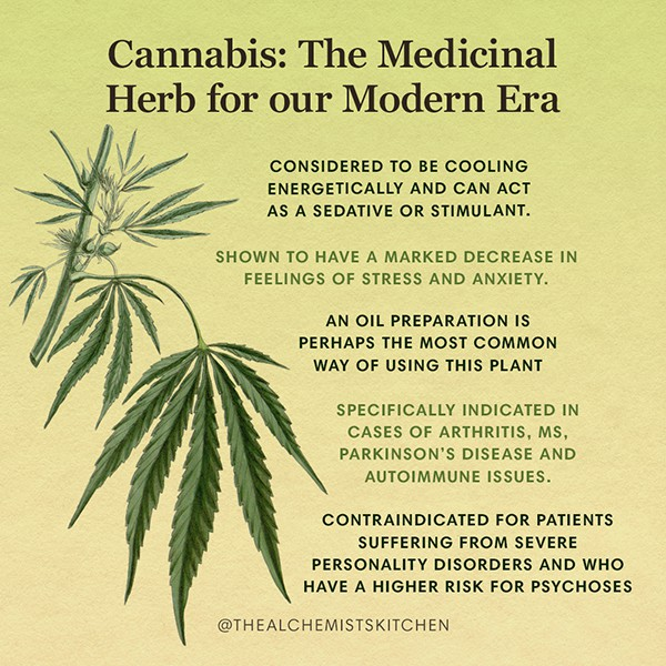 Cannabis Herb Infographic
