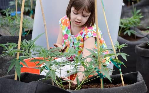 Charlotte Figi with Charlottes Web Cannabis Strain