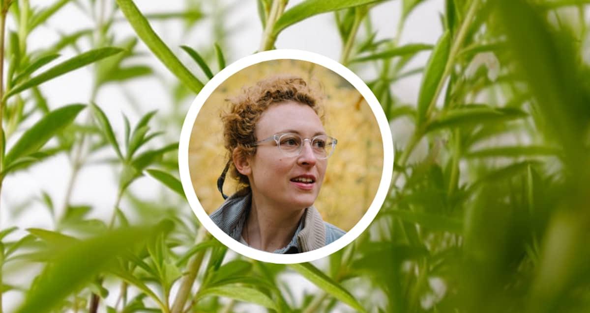 Herbalism in Real Life