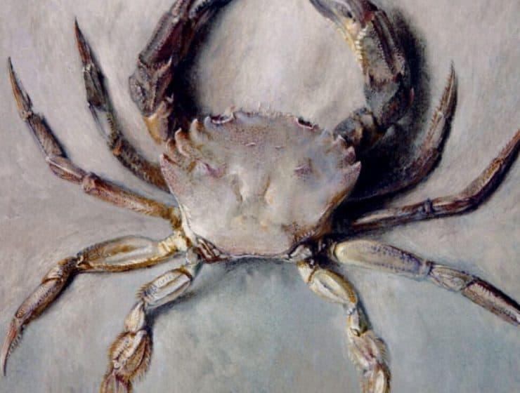 Crab_Painting.JPG