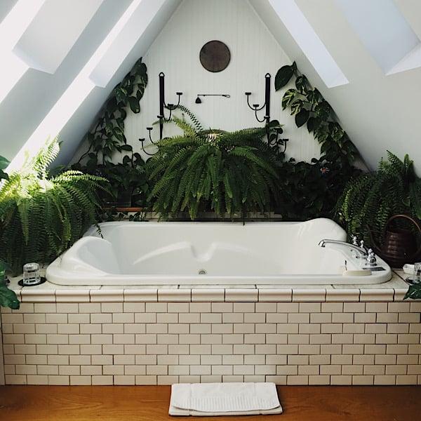 Baño Santero