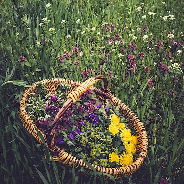 Spring Equinox
