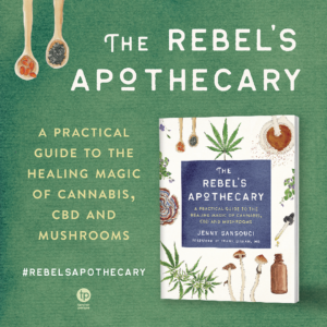 The Rebel's Apothecary Book Cover