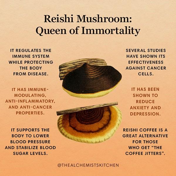Reishi Mushroom Infographic