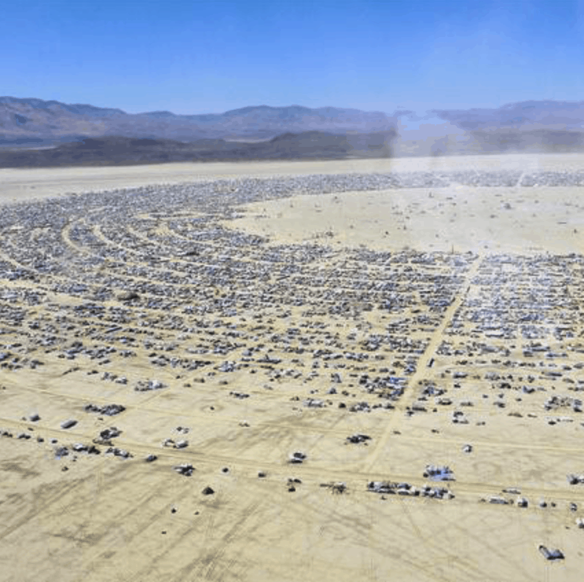 3 Reasons to Bring Herbs to Burning Man (And Which Ones to Take)