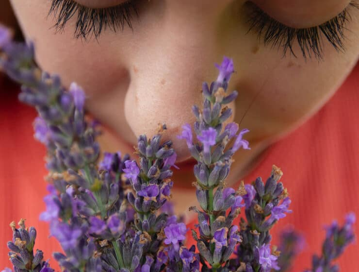 Woman Inhaling Lavender Smell