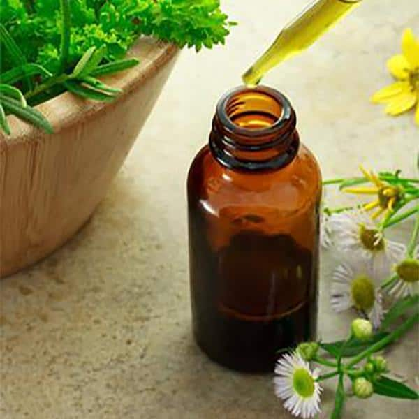 Treat Common Ailments at Home with Herbs