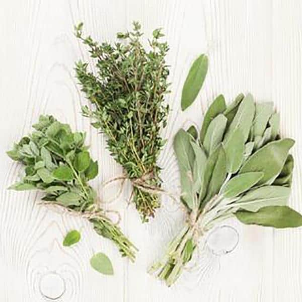 Ten Culinary Herbs and their Medicinal Uses
