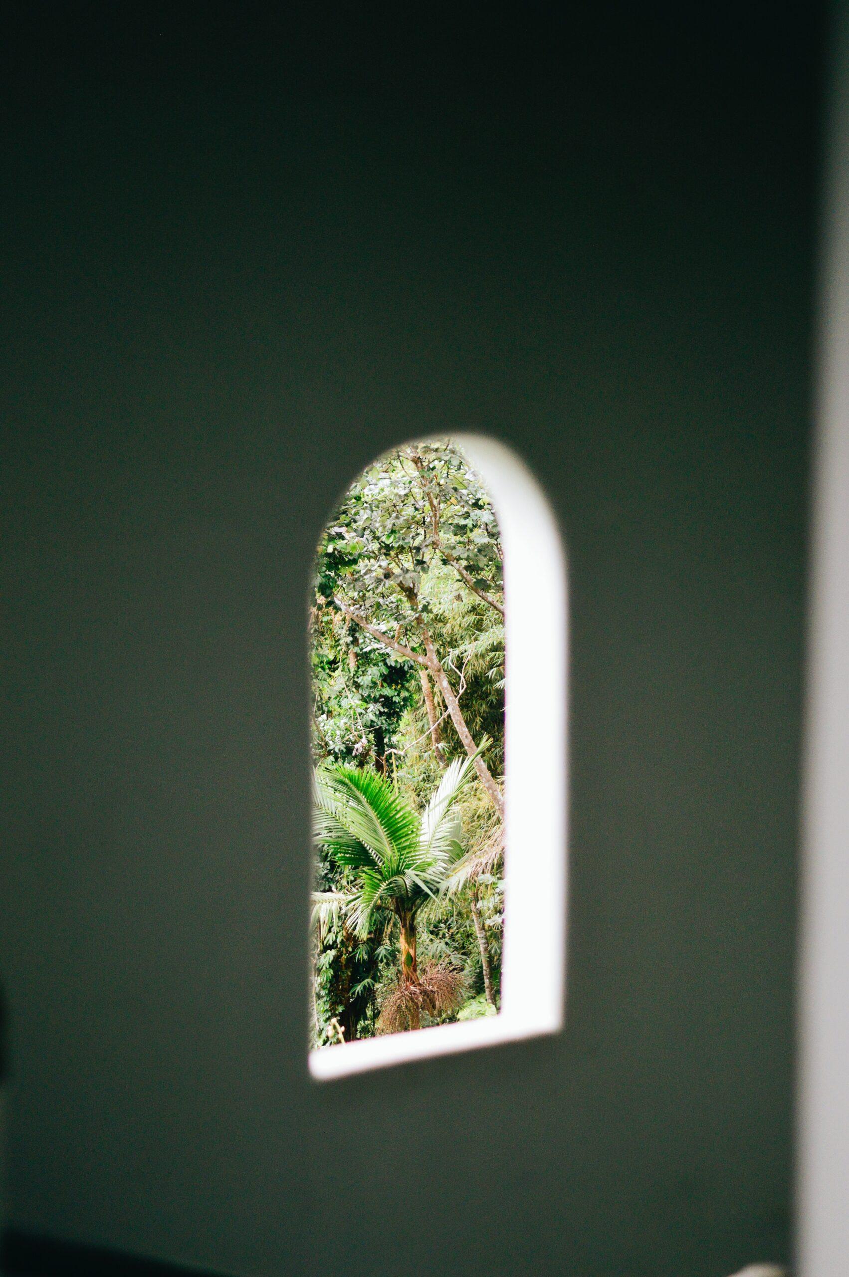 El Yunque through a window.