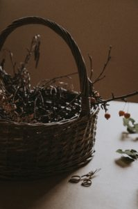 A foraging basket with twigs.
