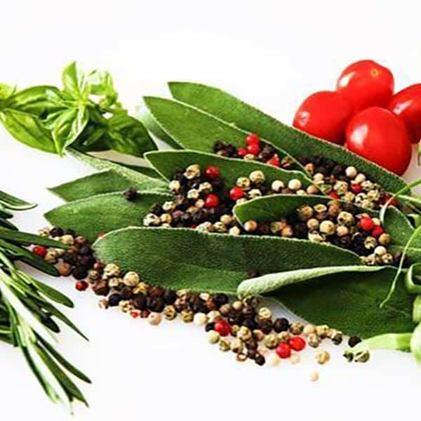 What Makes Food Different from Herbs
